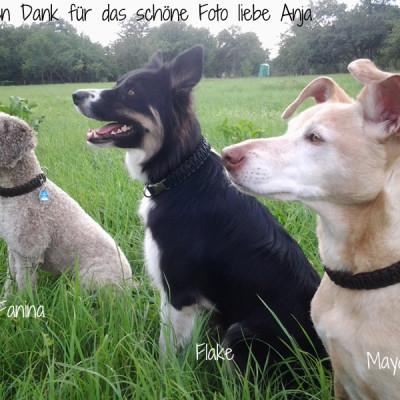 anja-klein-Fania-Flake-Maya-1