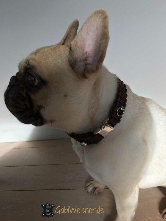 Lederhalsband mit Klickverschluss für kleine Hunde