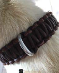 Lederhalsband-mit-Klickverschluss-für-kleine-Hunde-3-cm-breit-5