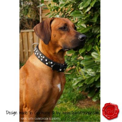Dog Collar Don Carlos