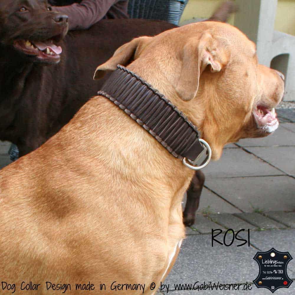 Hundehalsband-Leder-rosi-1