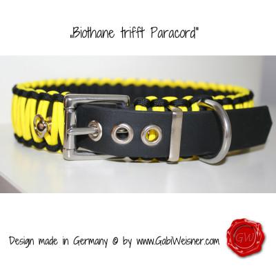 Hundehalsband-in-schwarz-gelb