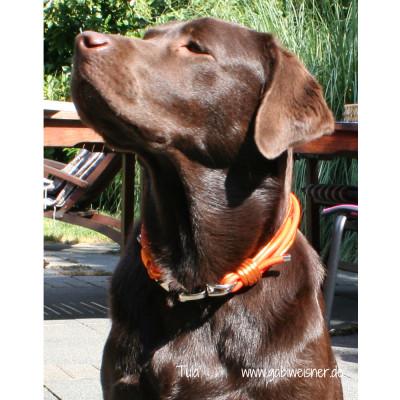 Hundehalsband-Leder-6-reihig-orange-Tula-2