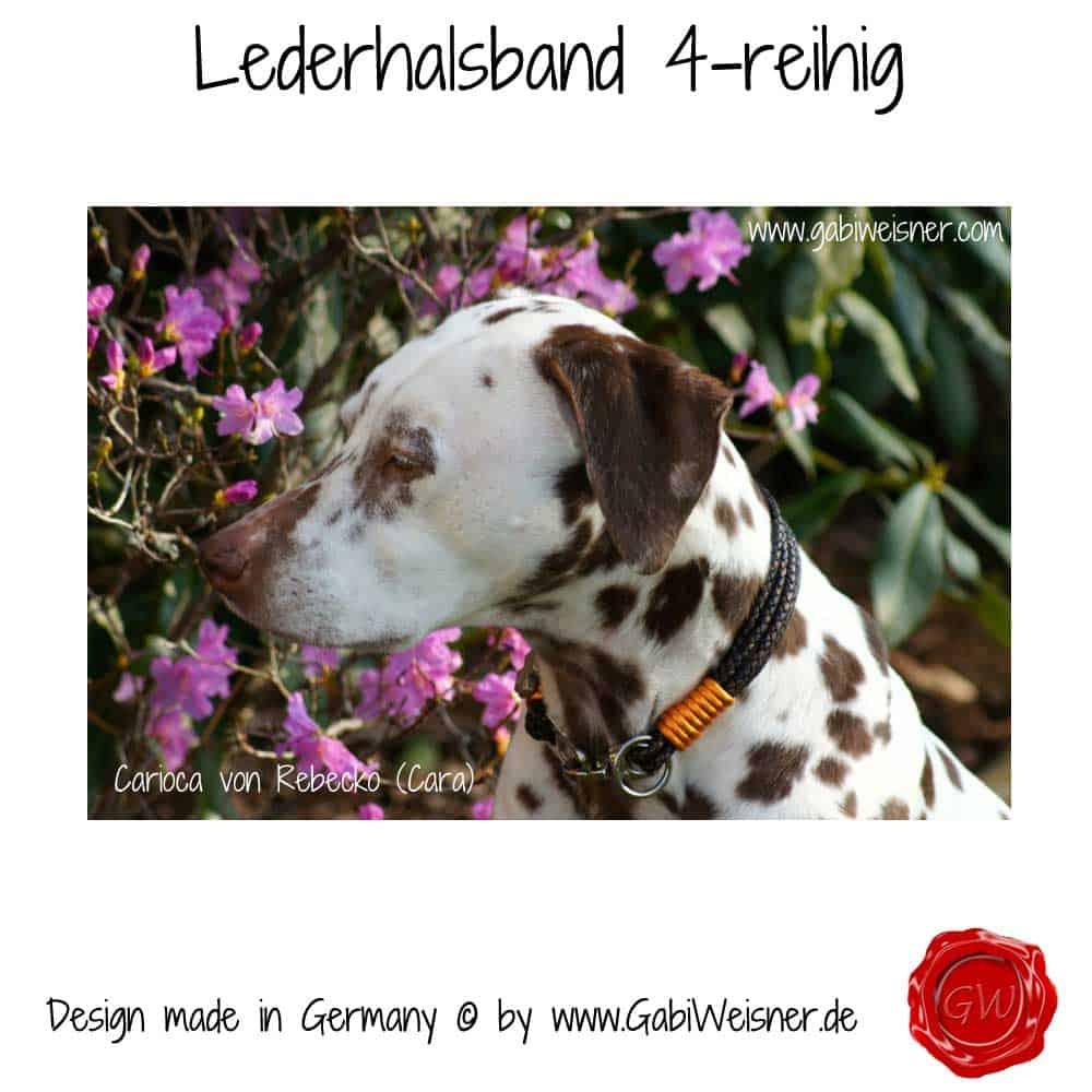 Lederhalsband-4-reihig