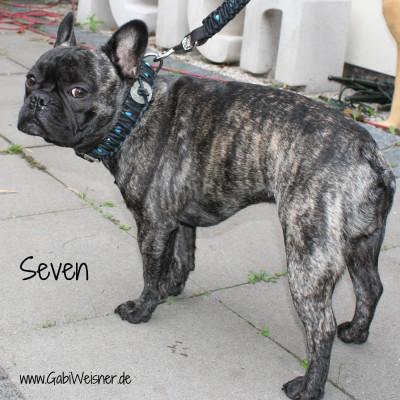 Seven-im-Western-Look-2
