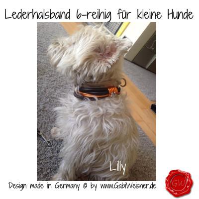 Lederhalsband-6-reihig-für-kleine-Hunde-Lilly-Queeny-8