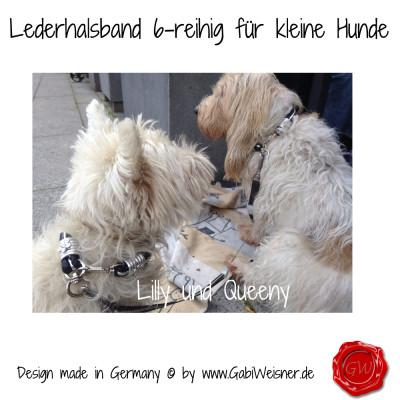 Lederhalsband-6-reihig-für-kleine-Hunde-Lilly-Queeny-6