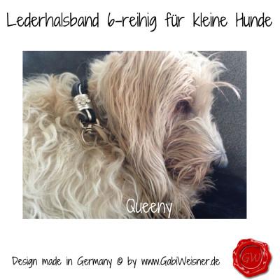 Lederhalsband-6-reihig-für-kleine-Hunde-Lilly-Queeny-5