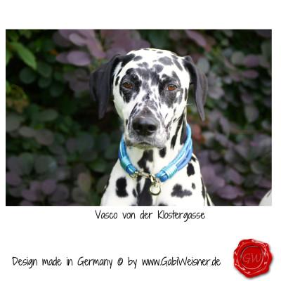 Hundehalsband-Leder-6-reihig-1