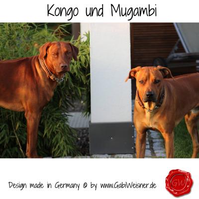 Kongo-Mugambi-44