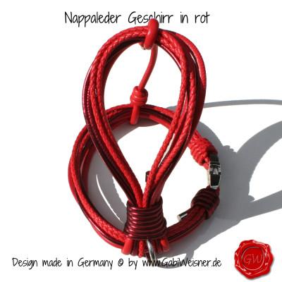 Nappleder-Geschirr-rot-3
