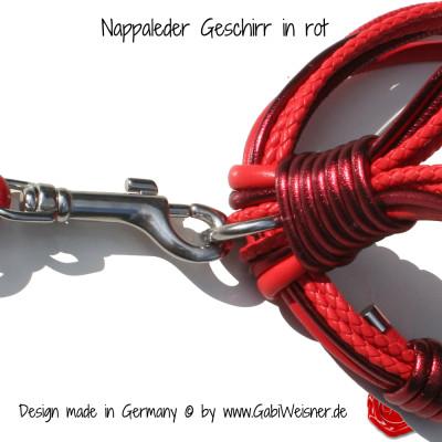 Nappleder-Geschirr-rot-6