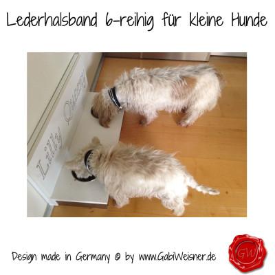 Lederhalsband-6-reihig-für-kleine-Hunde-Lilly-Queeny