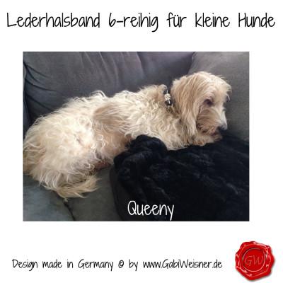 Lederhalsband-6-reihig-für-kleine-Hunde-Lilly-Queeny-3