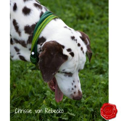 Crissie-von-Rebecko