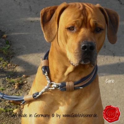 Hundehalsband-Lederhalsband-Carlo-1