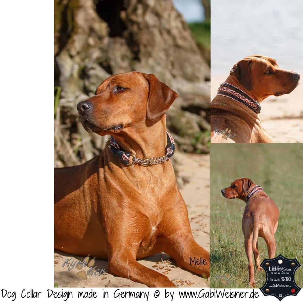 Hundehalsband-Leder-rot-weiß-melle-2