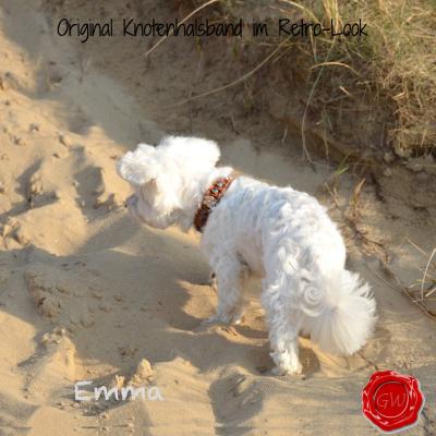 Lederhalsband-kleine-Hunde-türkise-mit-Blumen-emma-3