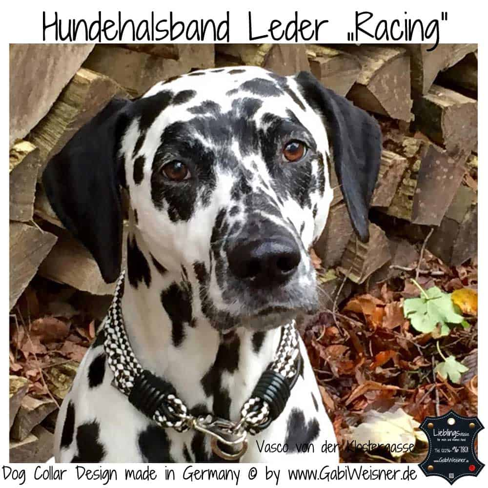 hundehalsband-leder-racing-schwarz-weiß-4