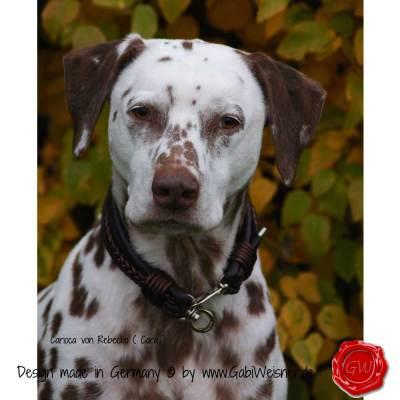 Hundehalsband-Leder-Mix-5-reihig-Olive-11