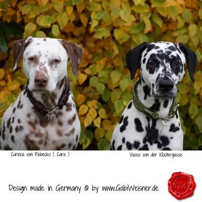 Hundehalsband-Leder-Mix-5-reihig-Olive-7