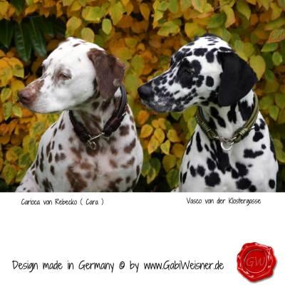 Hundehalsband-Leder-Mix-5-reihig-Olive-9