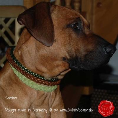 Hundehalsband-Lederhalsband-Ledermix-Sammy