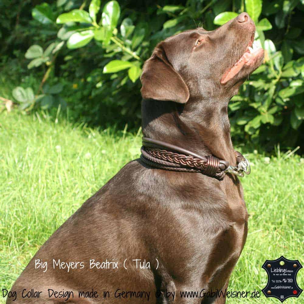 Hundehalsband-Ledermix-Schokobraun-6-cm-breit-5