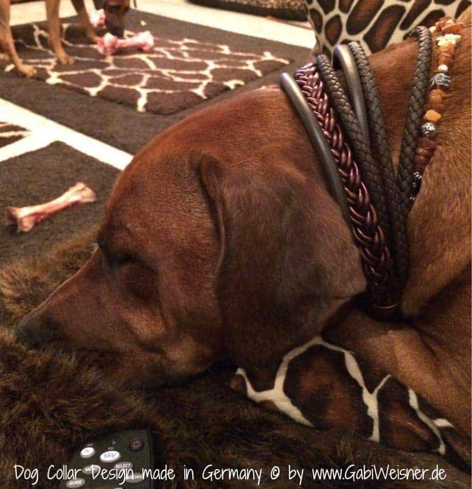 Hundehalsband-Ledermix-Schokobraun-6-cm-breit-6
