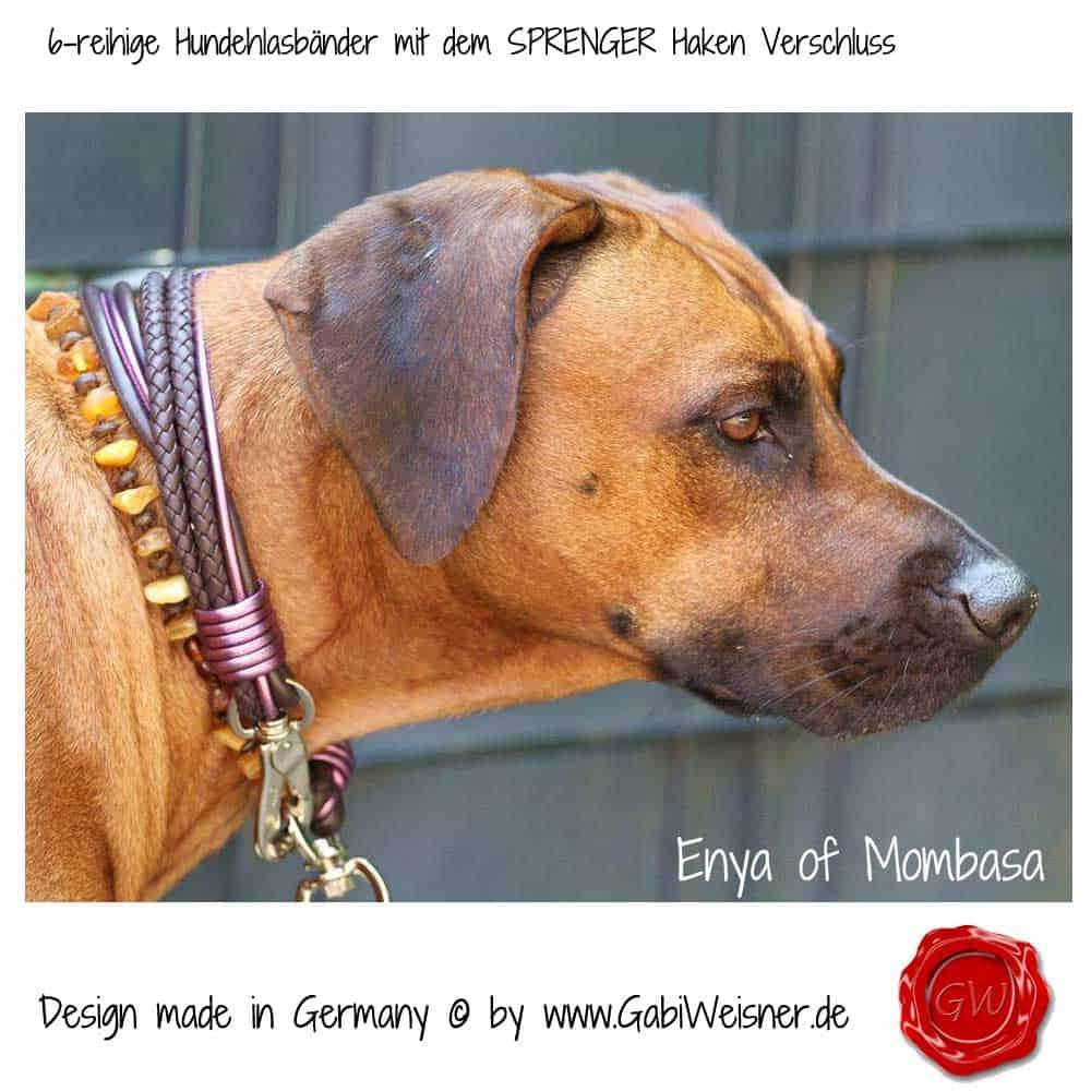 Hundehalsband-Leder-Mix-Ridgeback-lila-7