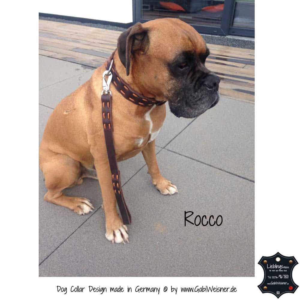 Hundehalsband-Fettleder-Rocco-1