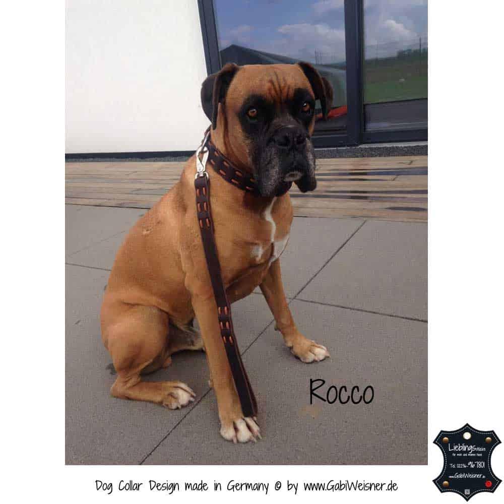 Hundehalsband-Fettleder-Rocco-2