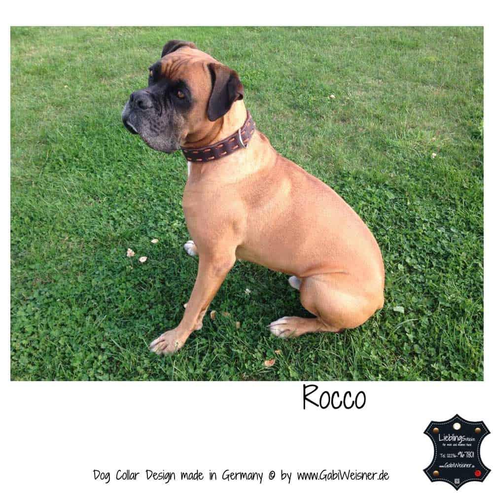 Hundehalsband-Fettleder-Rocco-4