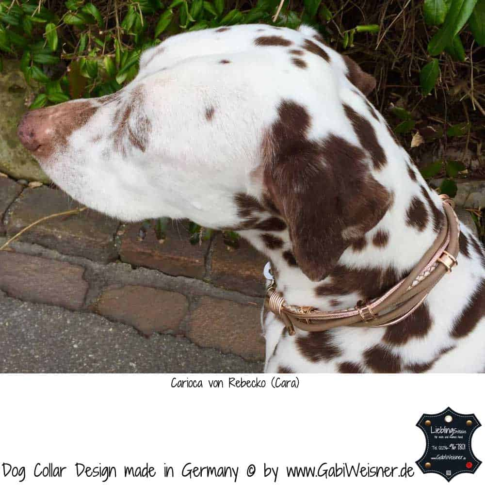 Hundehalsband-Leder-Gabi-Weisner-Cara-1