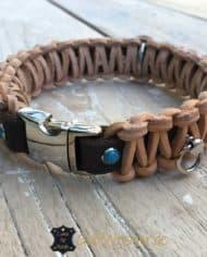 hundehalsband-leder-kleine-hunde-klickverschluss-2