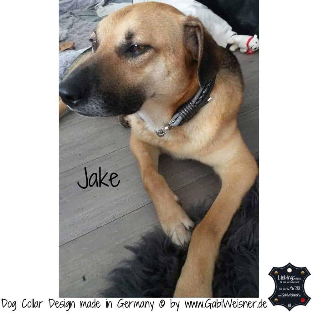 Hundehalsband-Ledermix-Jake-1