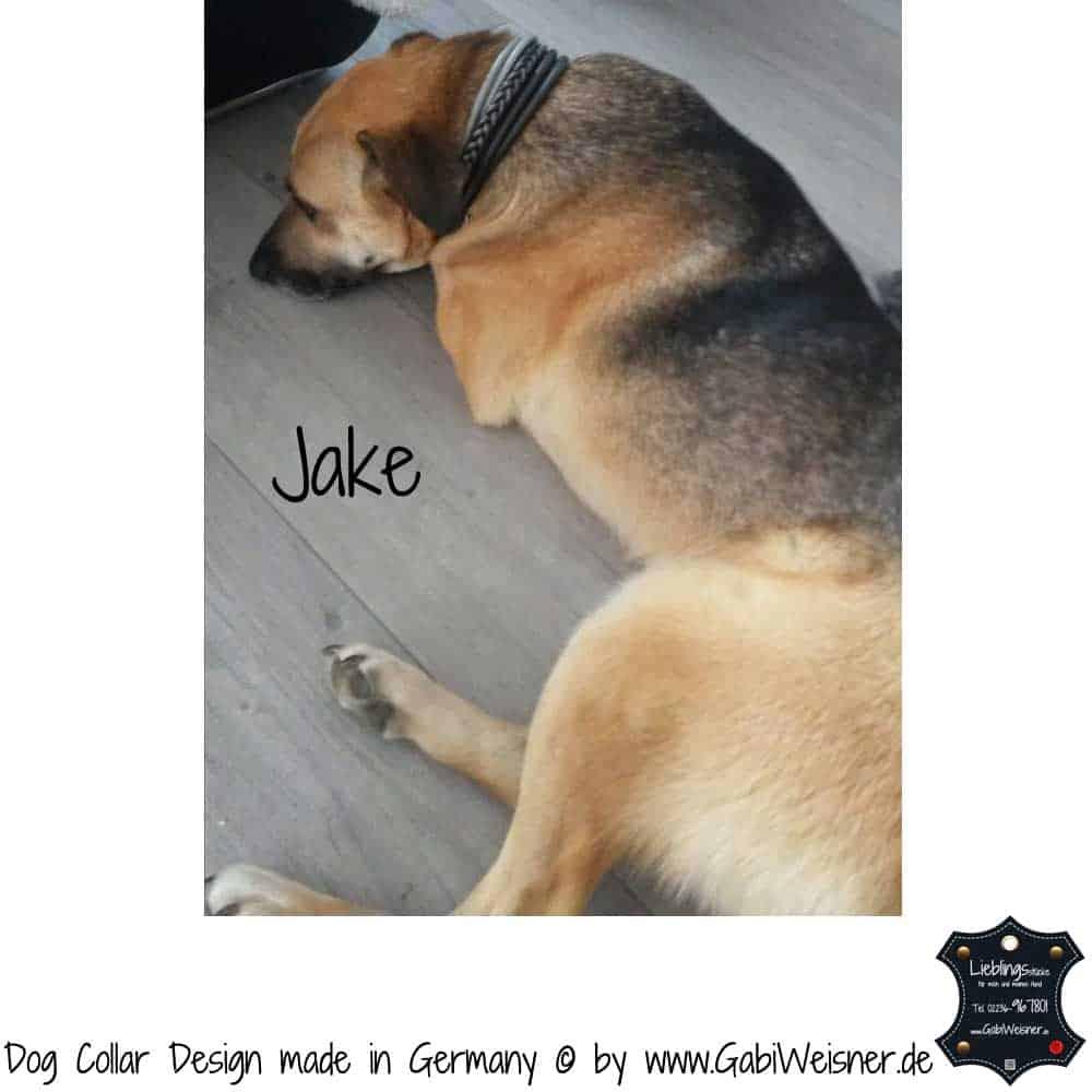 Hundehalsband-Ledermix-Jake-2