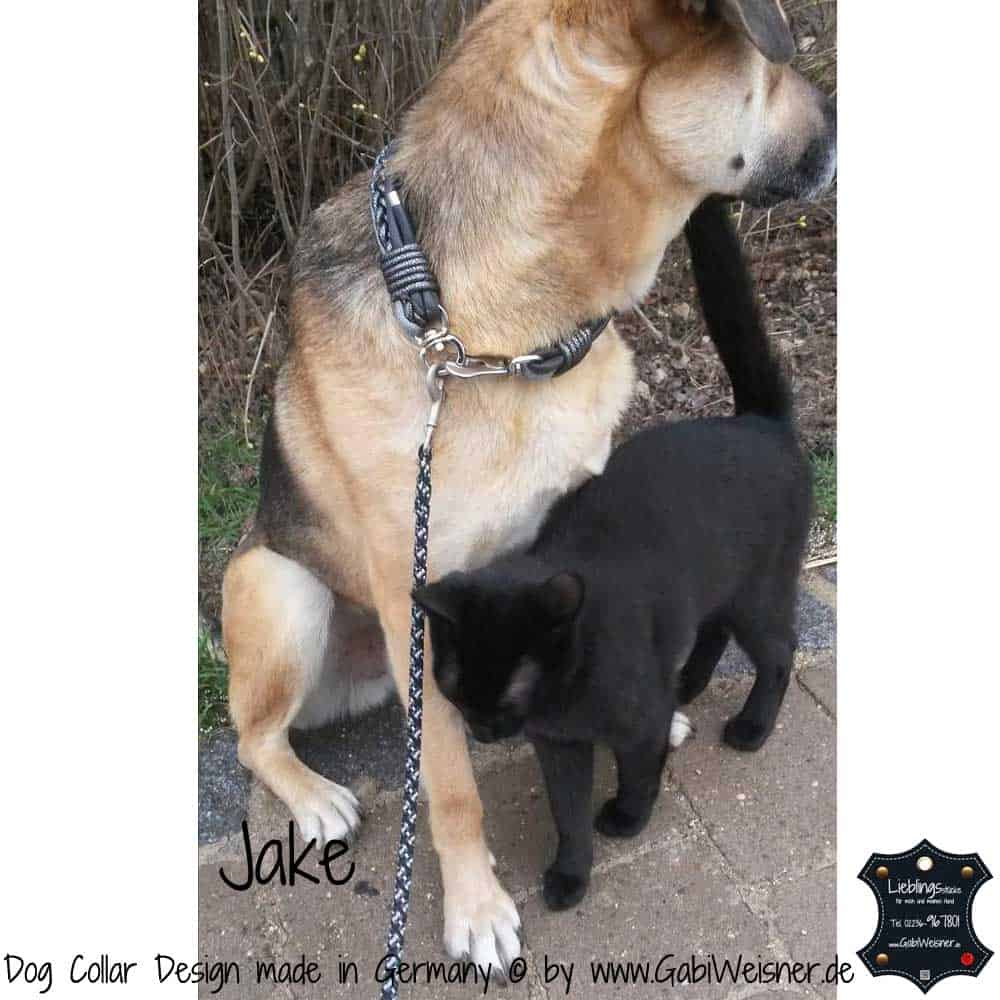Hundehalsband-Ledermix-Jake-3
