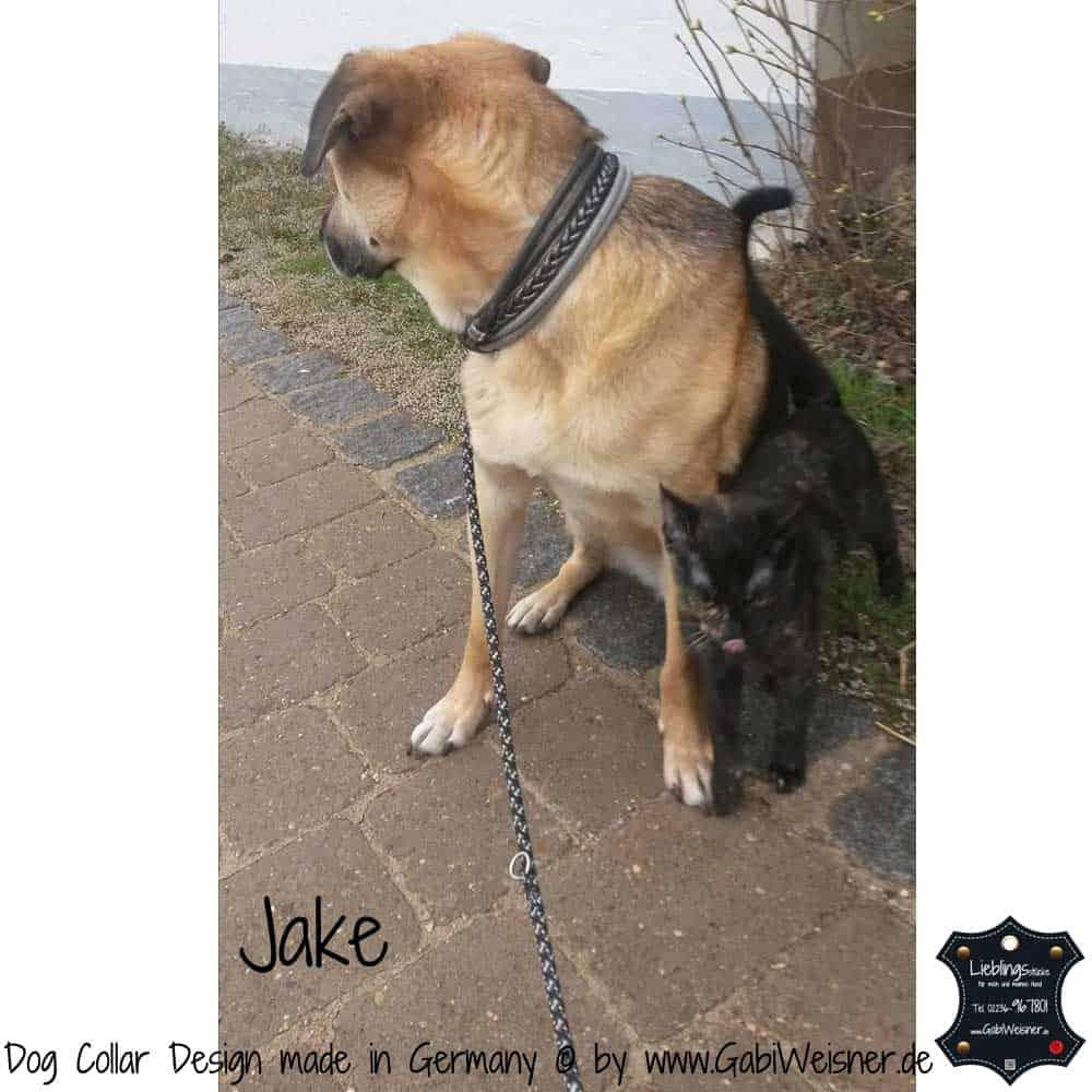 Hundehalsband-Ledermix-Jake-5