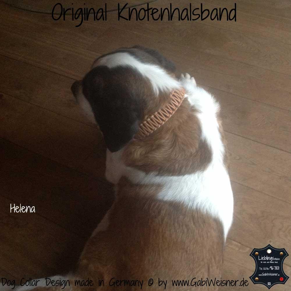 Hundehalsband-Leder-Helena