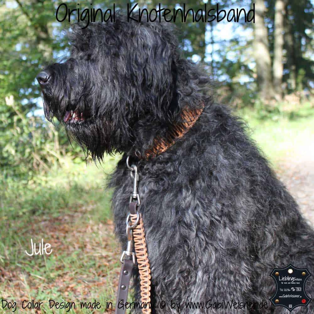 Hundehalsband-Leder-Jule