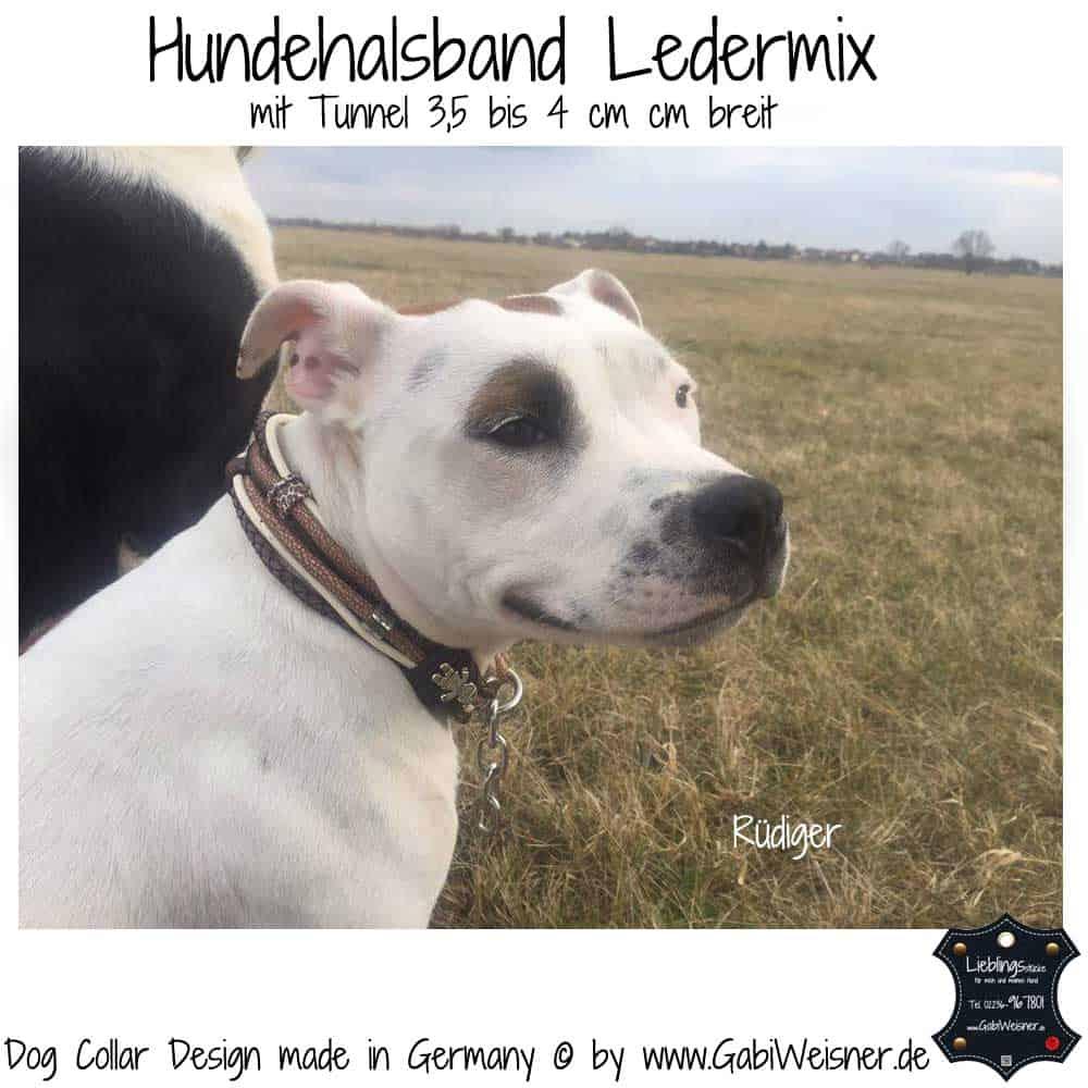 Hundehalsband-Ledermix-Braun-Beige-7