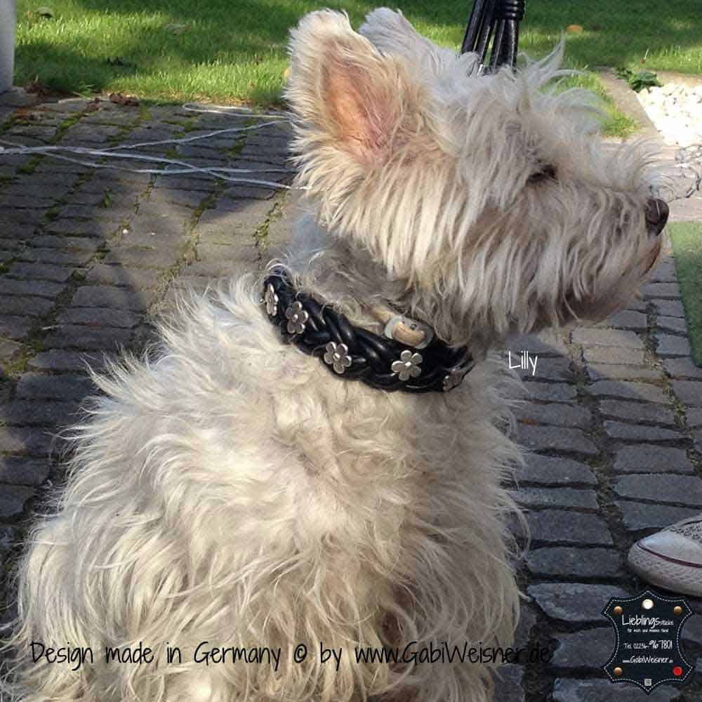 Hundehalsband-geflochten,-Leder-3-cm-breit-13
