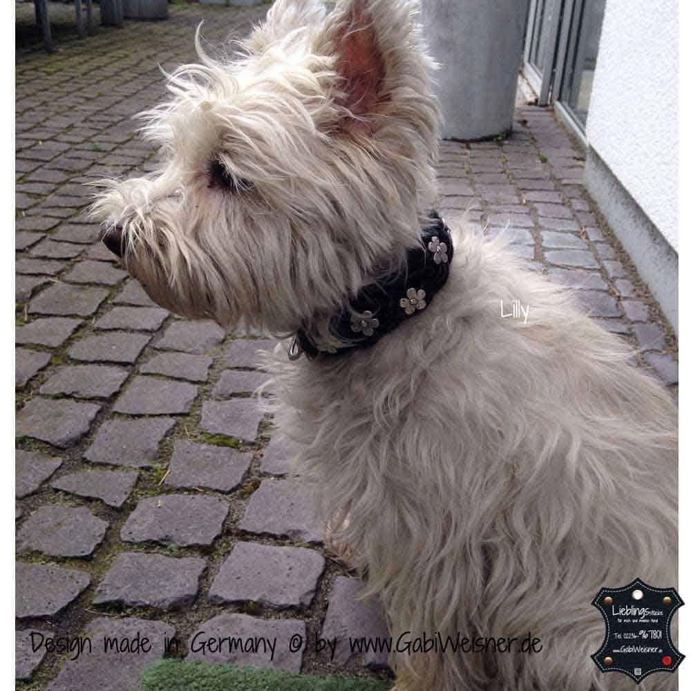 Hundehalsband-geflochten,-Leder-3-cm-breit-4