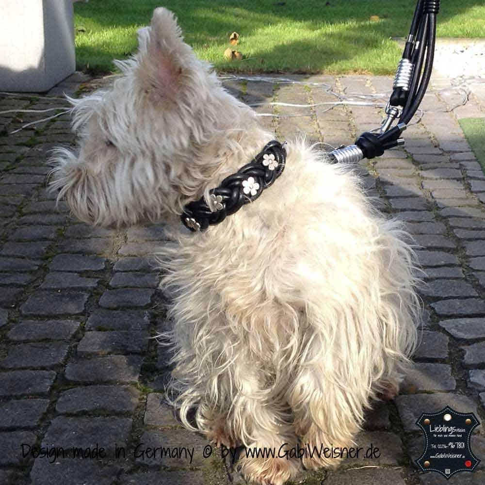 Hundehalsband-geflochten,-Leder-3-cm-breit-5