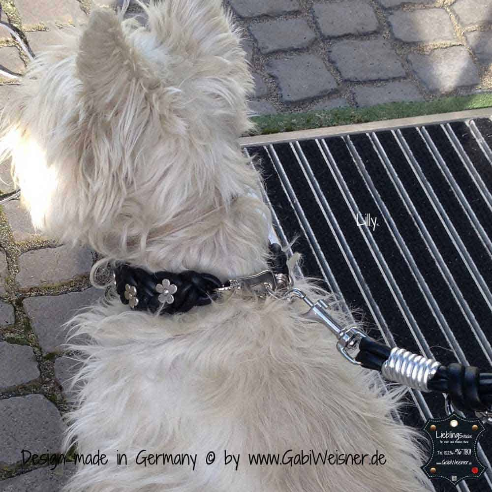 Hundehalsband-geflochten,-Leder-3-cm-breit-6