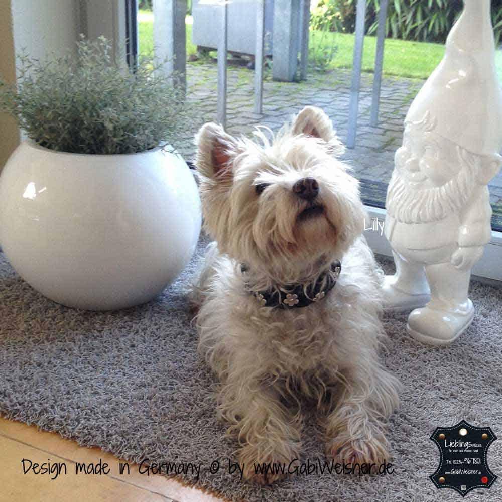 Hundehalsband-geflochten,-Leder-3-cm-breit-7