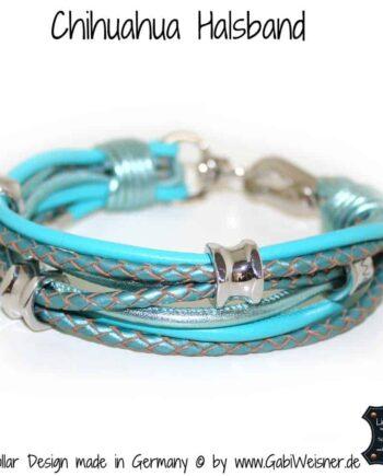 Chihuahua Halsband