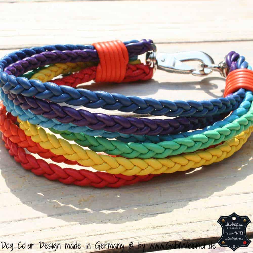 Hundehalsband-Regenbogen-1