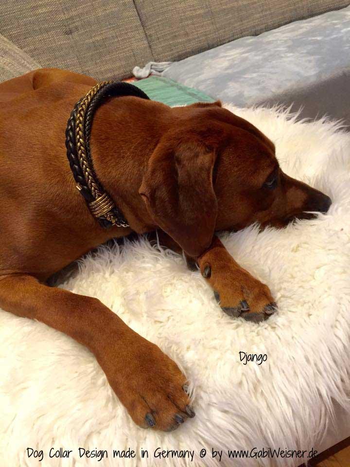 Hundehalsband Weihnachten Leder 4 cm breit DJANGO